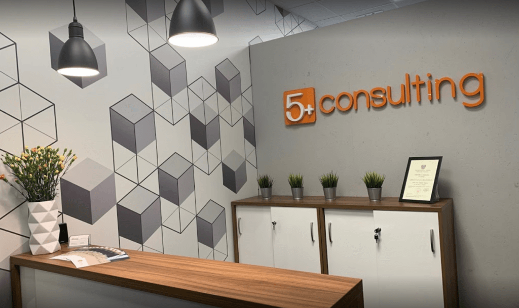 5+ consulting